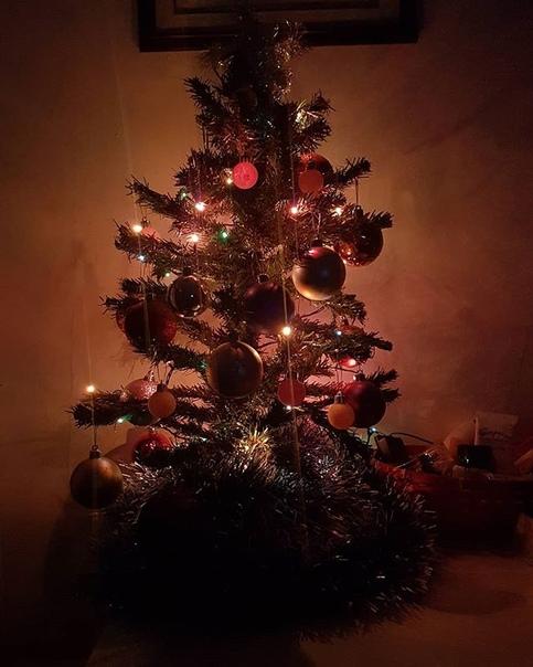 Ириша Чазова: Все уже украсили дом?) #новогоднеенастроение #елка #гирлянда #шарики #новыйгод #2019 #happynewyear #happy