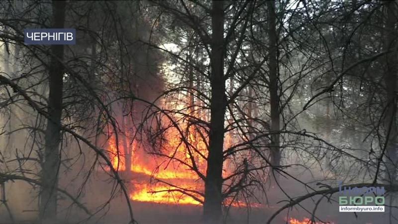 Впав у траву і згорів: на Чернігівщині під час гасіння пожежі загинув чоловік
