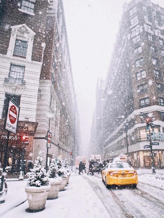30 лучших фото рождественских Нью-Йорка, Парижа, Стокгольма и других красивых городов, изображение №1
