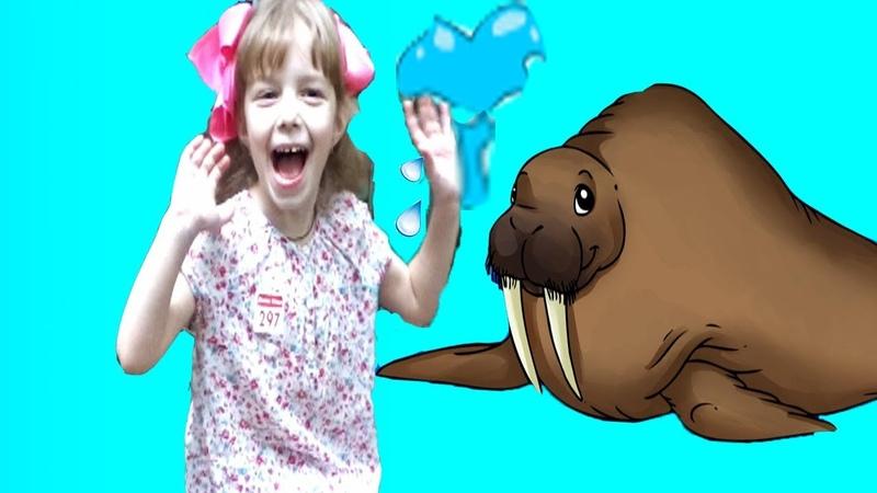 Сафари Парк В Зоопарке 2 Нас обрызгал морж Safari World