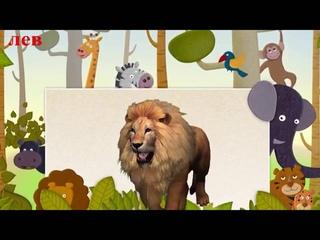Умный малыш #11  Развивающий мультфильм для малышей  Smart baby #11  Наше всё! Low, 360p