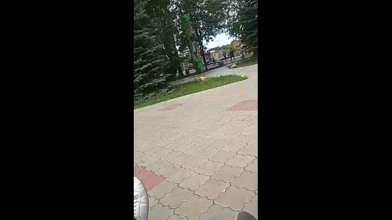 Алексей Даматов - Live