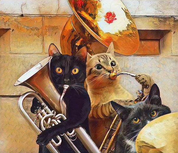 Музыкальные смешные открытки