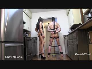 Obey Melanie