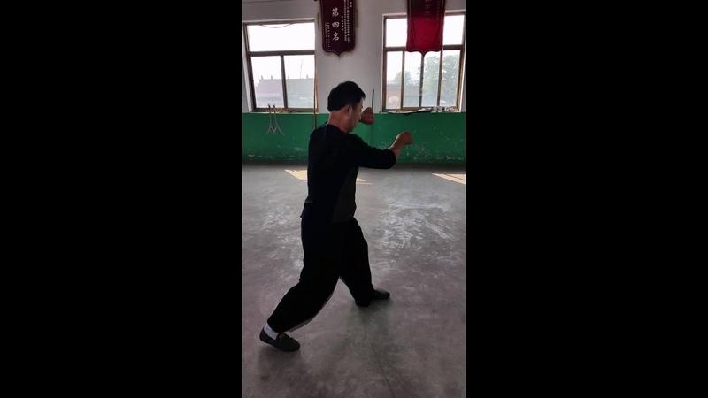 Song Style Xingyi Pao Quan 宋氏形意炮拳