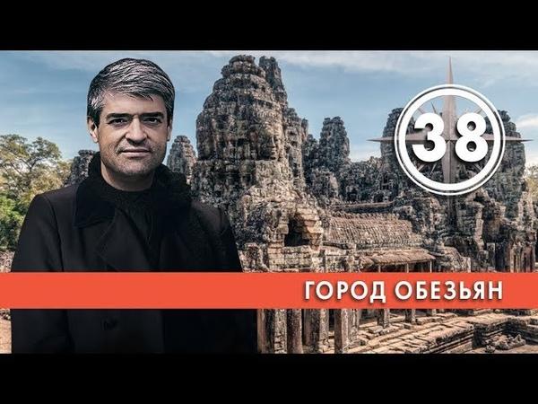 Город обезьян Выпуск 38 03 04 2019 НИИ РЕН ТВ