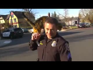 Нападение на полицейского прямо во время интервью