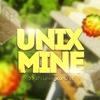 UnixMine 2.0 › Успешный сервер