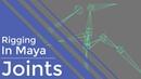 Rigging in Maya   Fundamentals   Joints