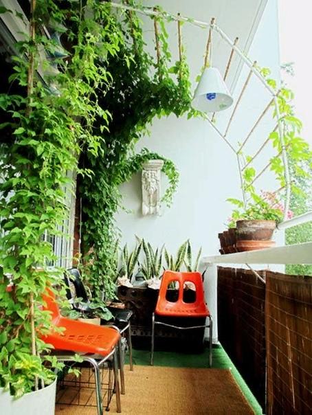 Идеи озеленения террасы, которые легко реализовать