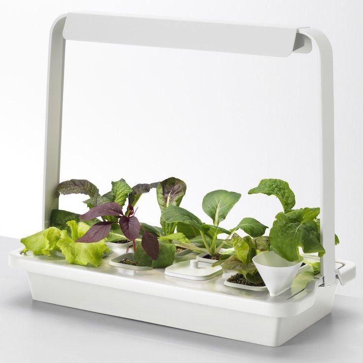 A Hydroponic Countertop Garden Kit / Ikea