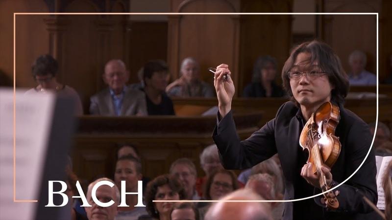 Bach - Sinfonia in D major BWV 1045 - Sato | Netherlands Bach Society