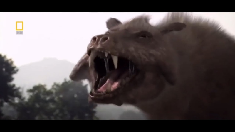 Доисторические хищники Челюсти как бритва Документальные фильмы National Geographic HD