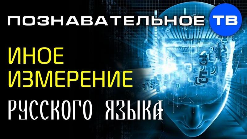 Иное измерение РУССКОГО ЯЗЫКА (Познавательное ТВ, Сергей Сухонос)