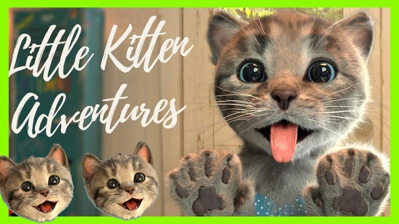 Sevimli Minik Kedi Kostüm Giydir partisi çizgifilm Tadında Yeni Oyun