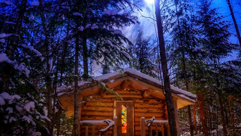 In the Forest with my Wife and Dog | Off Grid Log Cabin in the Wilderness