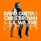 Обложка I Can Only Imagine feat Chris Brown & Lil Wayne - David Guetta - Chris Brown - Lil Wayne feat. Chris Brown & Lil Wayne) Extended