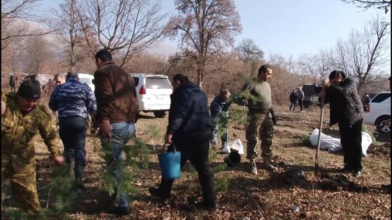 Անտառահատման դեմ Տավուշի ոստիկանների պա1397