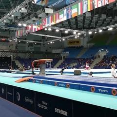 European Gymnastics on Instagram: Maria Paseka's first vault - #qualifications #ecszczecin2019 @ecszczecin2019