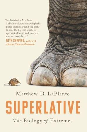 Superlative - Matthew D. LaPlante