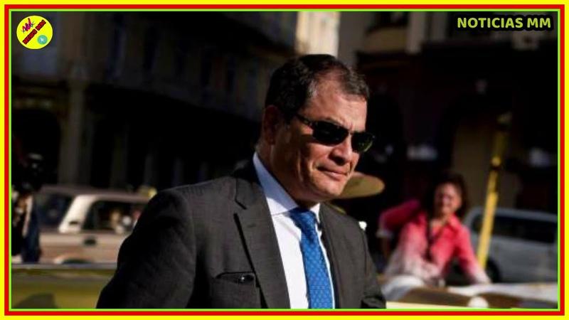 Rafael Correa GANARA las ELECCIONES el DESEPERO del CNE por DISOLVERLO