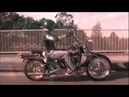Brothers In Arms not Bikie Wars by Black Label Australia