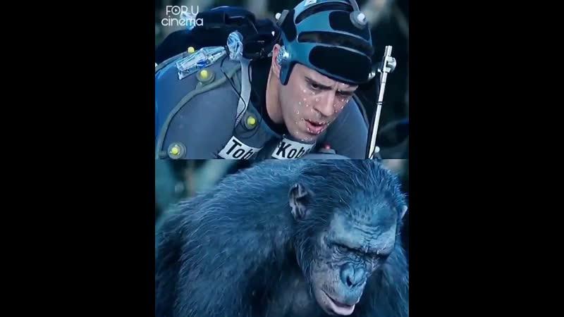 Планета обезьян 2014.