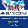 Страхование в Могилеве - мы лучшие!!!
