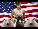 Senate Approves Bill that Legalizes Sodomy and Bestiality in U S Military