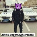 Фотоальбом Ярослава Аксёнова