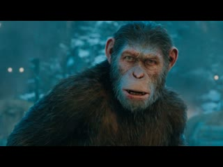 Планета обезьян: Война : 2017 : HD