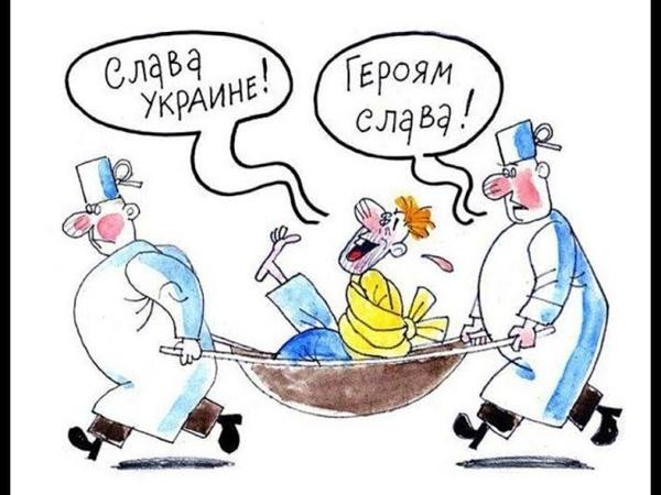 Околорадский Таракан Чудит зеленый консервант на просторах Украины
