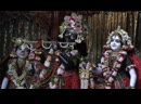 Darshan Arati - Sri Mayapur Dham May 19, 2020