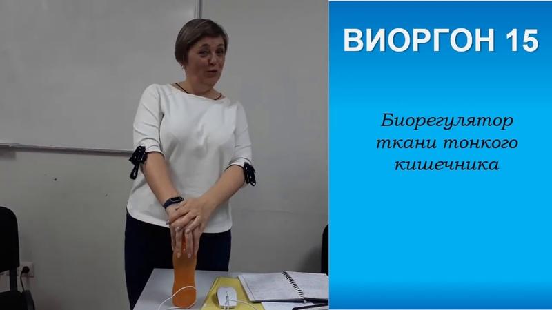 Обзор виоргонов 11-20. Ольга Цирулис Аврора