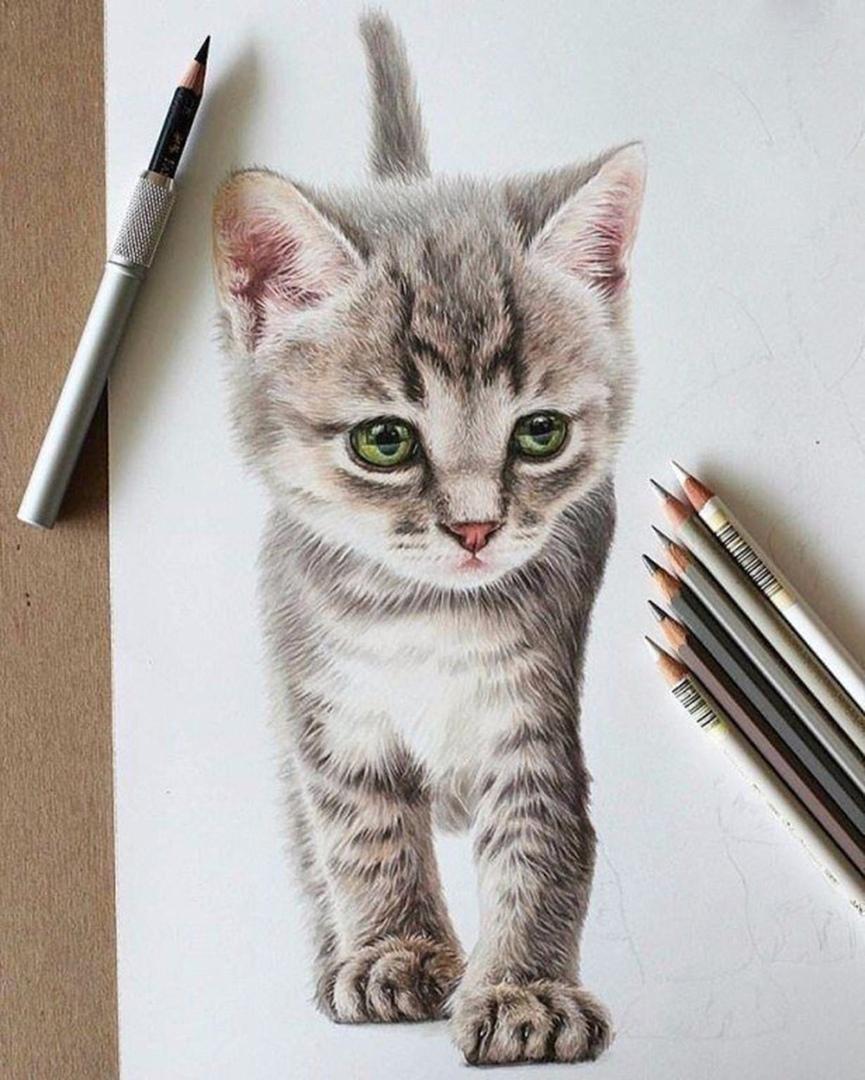 Нарисовала своего любимого котенка, оцените от 1 до 10✍