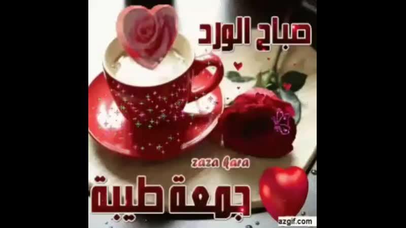 VID_273700606_153024_591.mp4