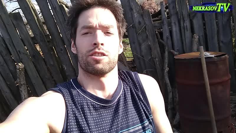 #fitness Garden #Workout for amateurs | #1 | #фитнес тренировка в саду для начинающих (#лучшедома чем не дома) | шоу Nekrasov TV