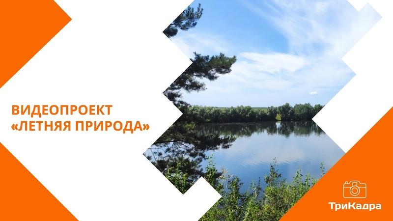 Видеопроект ЛЕТНЯЯ ПРИРОДА