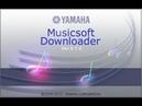 Как загрузить стили sty в синтезатор Ямаха/Yamaha PSR-E423