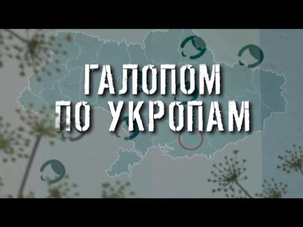 ГТРК ЛНР Галопом по укропам 13 40 26 марта 2020 год