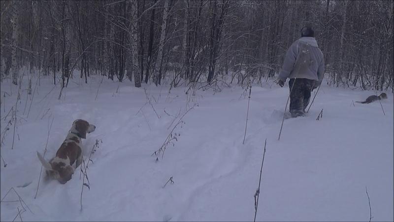 Охотник 54 рус