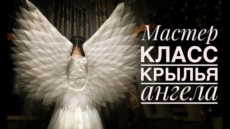 Крылья Ангела из подложки своими руками / DIY How to make angel wings /Asas de anjo DIY