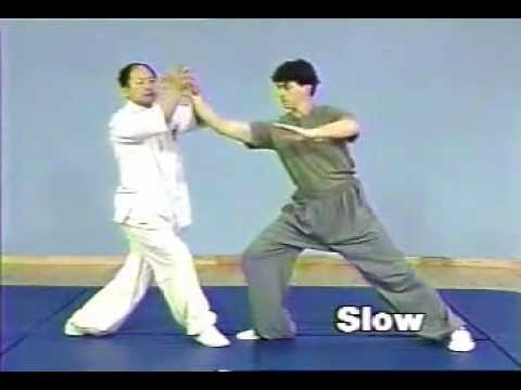 Tai Chi Chuan - Chin Na - fight techniques by Dr Yang Jwing-Ming