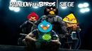 Радуга - плагиат Angry Birds? | Rainbow Six: Siege