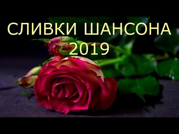 SHANSON 2019