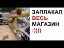 Лютые приколы. Король лев в магазине. Плакали все )