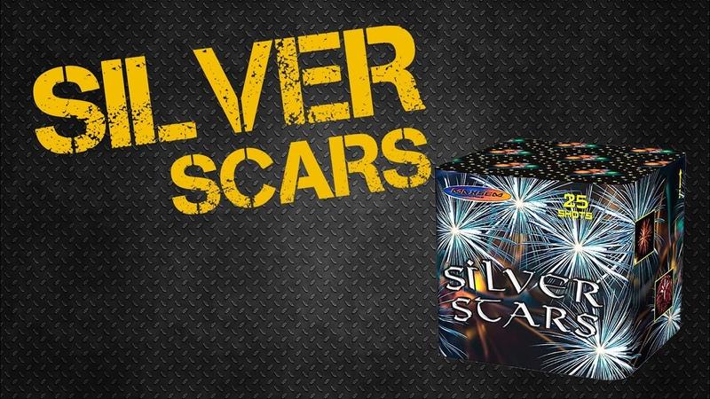 Silver Scars 25 залпов