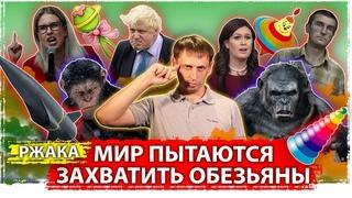 Мир пытаются захватить обезьяны |