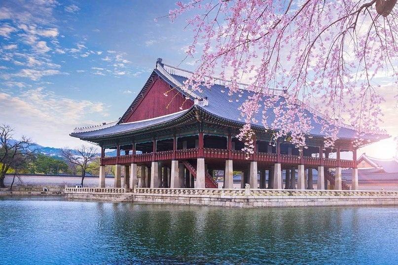 Страны мира — Южная Корея, изображение №2