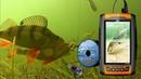 НОВИНКА 2020! Зимняя камера для рыбалки Lucky FL180PR